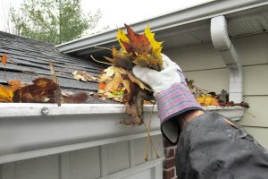 Maintaining Gutters